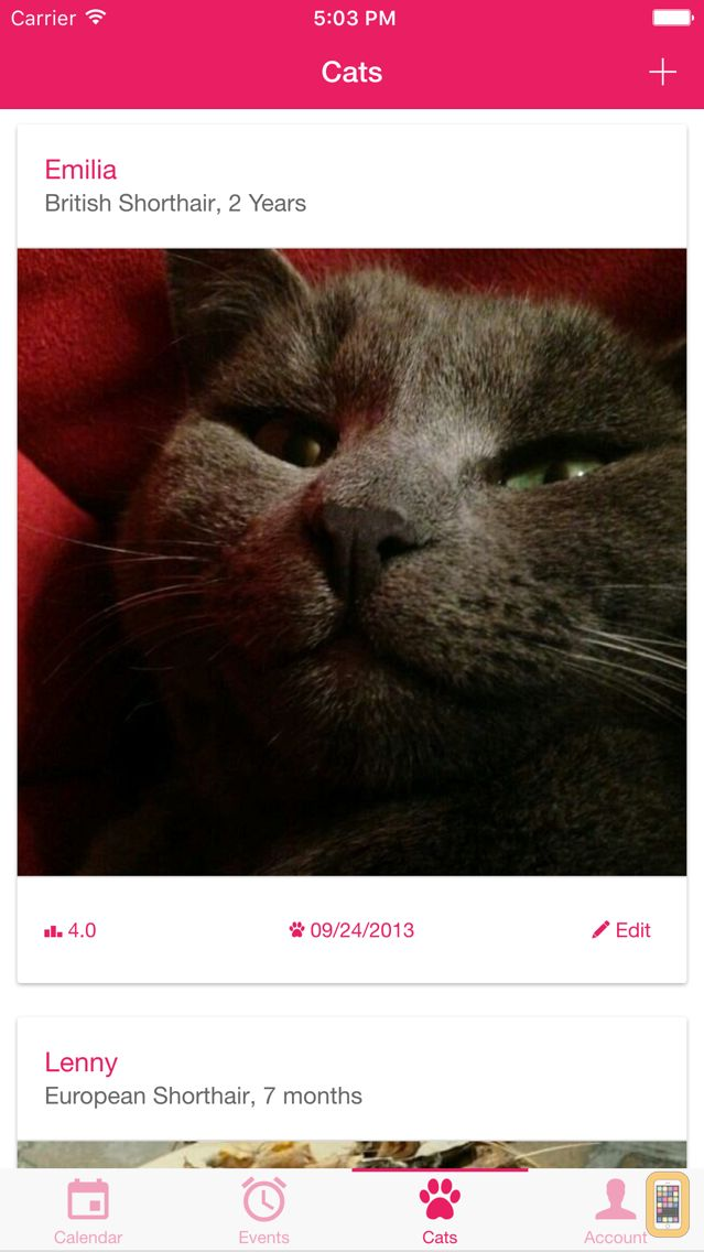 Screenshot - My Cat - Health & Care
