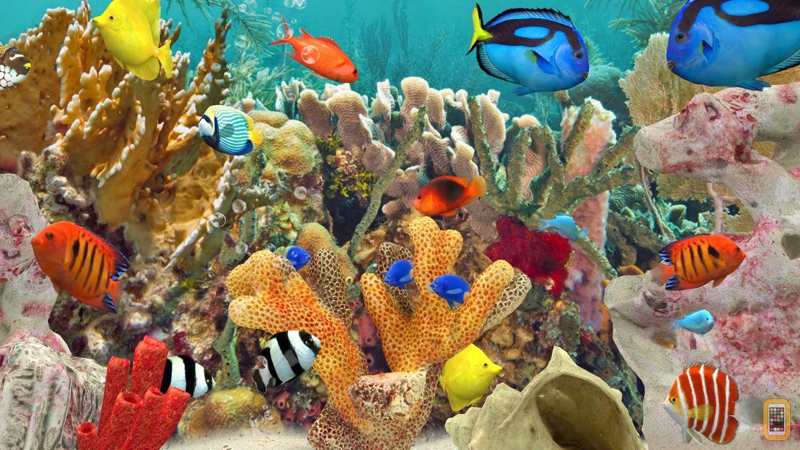Screenshot - MyReef 3D Aquarium 3