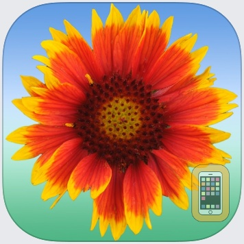 Flower Ref by Steve Shaw (Universal)