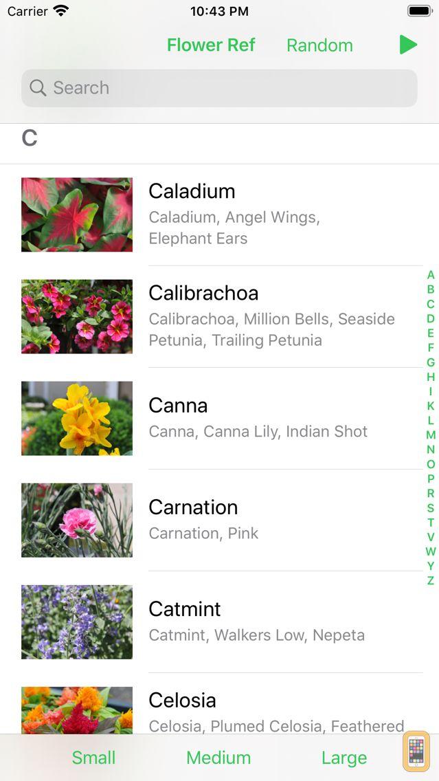 Screenshot - Flower Ref