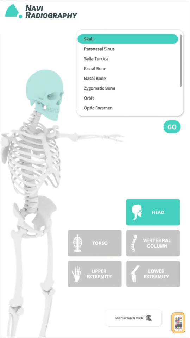 Screenshot - Navi Radiography Pro