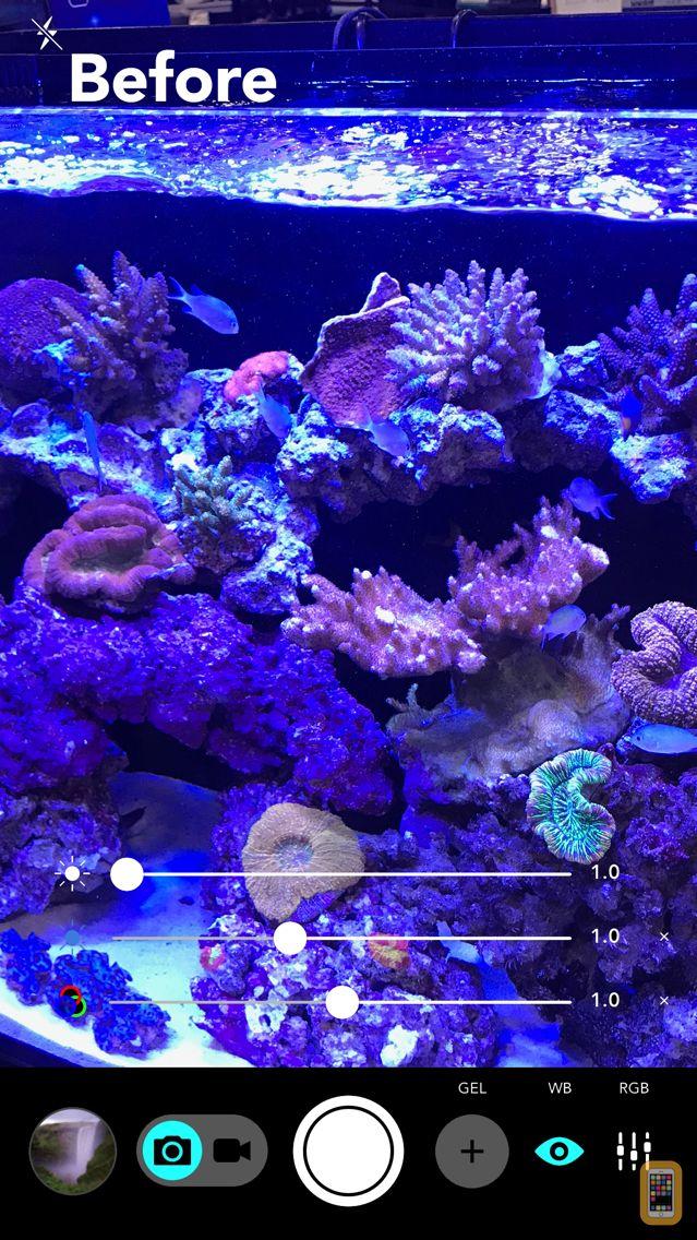Screenshot - Aquarium Camera