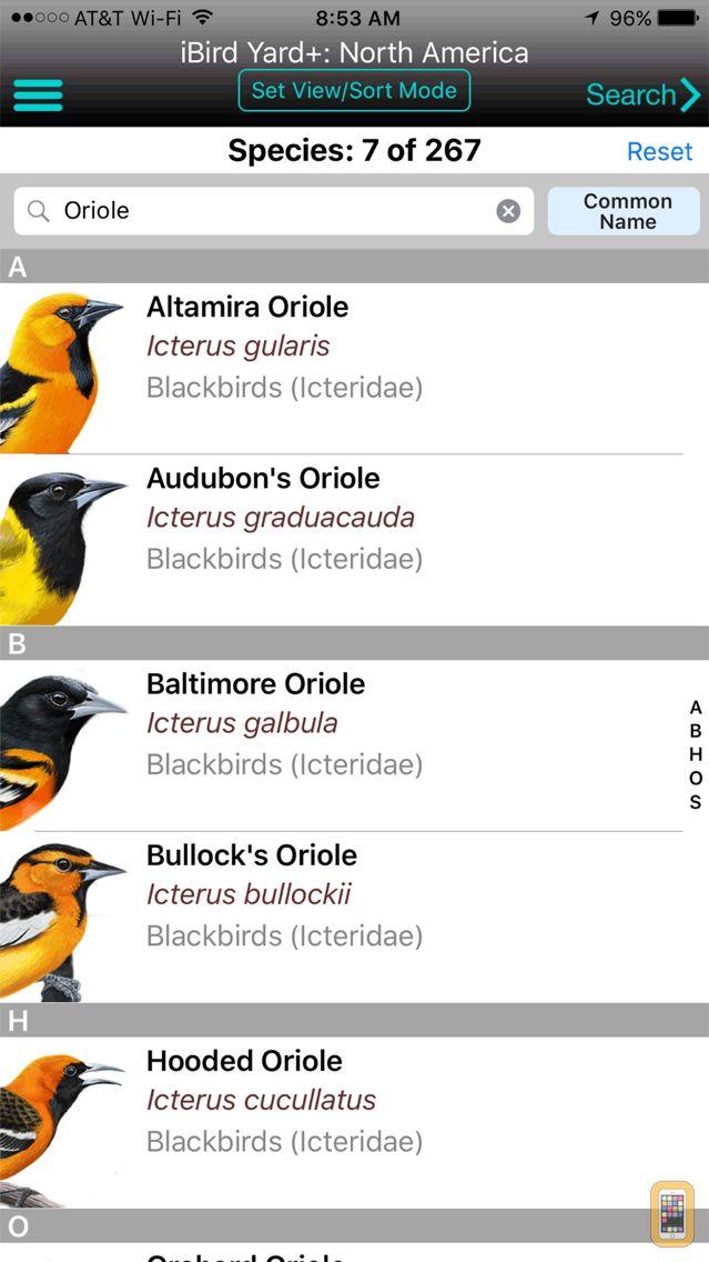 Screenshot - iBird Yard+ Guide to Birds