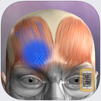 Muscle Trigger Points by Real Bodywork (Universal)