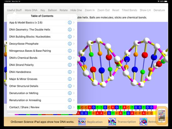 Screenshot - OnScreen DNA Model