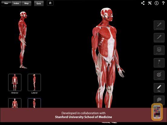 Screenshot - Muscle System Pro III