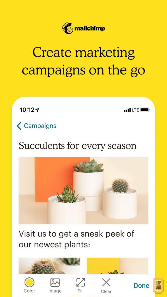 Screenshot - Mailchimp