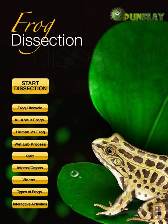 Screenshot - Frog Dissection