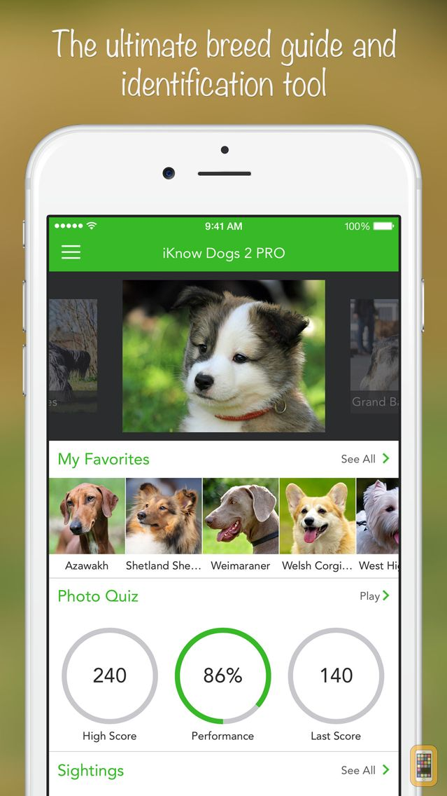 Screenshot - iKnow Dogs 2 PRO
