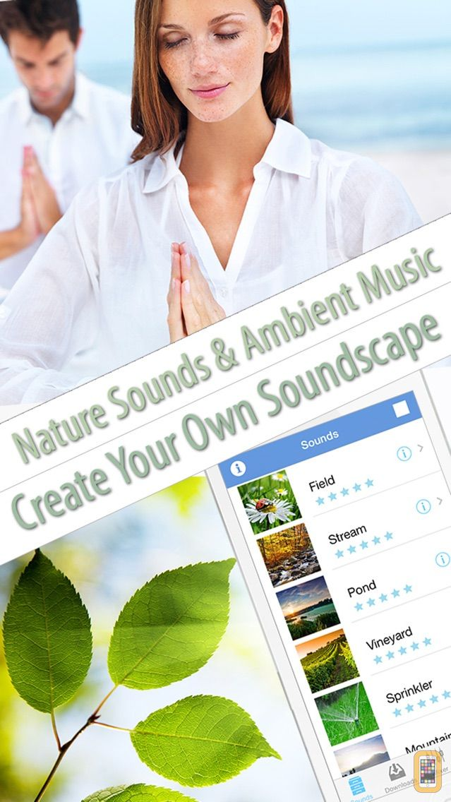 Relaxing Nature Sounds of Forest Stream, Smoothing Rain, Ocean Waves