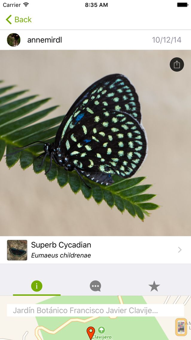Screenshot - iNaturalist