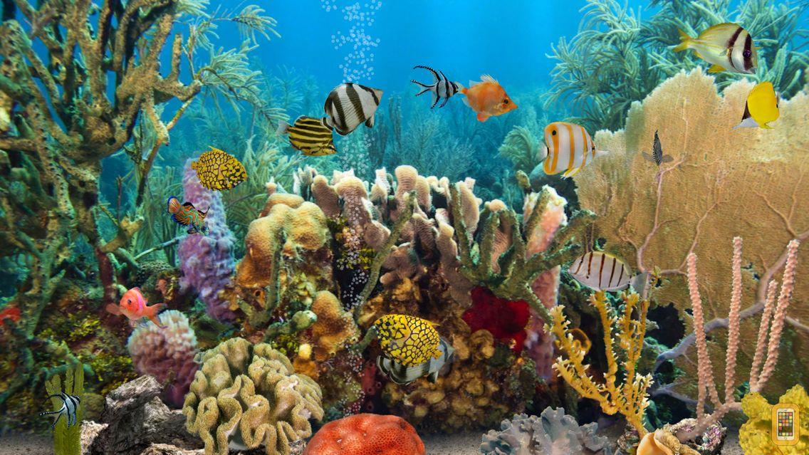 Screenshot - MyReef 3D Aquarium 2 HD