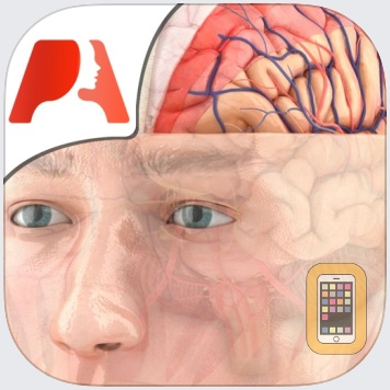 Pocket Brain by Pocket Anatomy (Universal)