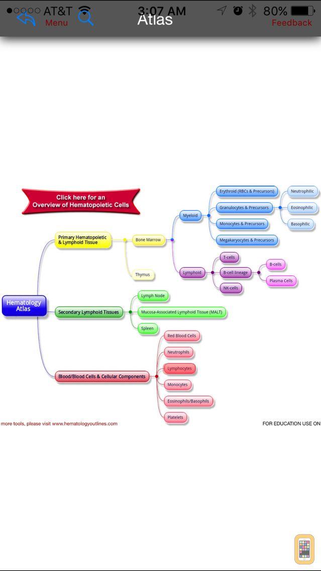 Screenshot - Hematology Outlines Atlas