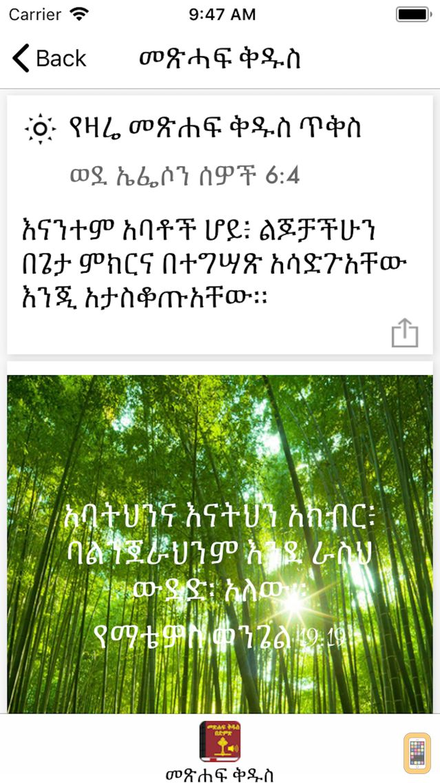 Bible amharic free download | Holy Bible In Amharic with Audio for