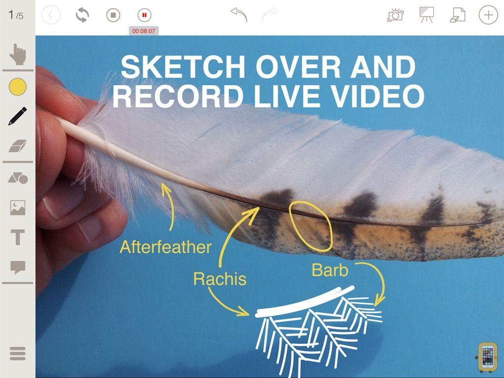Screenshot - Stage Pro: Interactive Whiteboard/Document Camera
