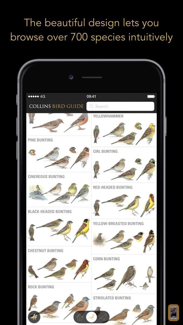 Screenshot - Collins Bird Guide