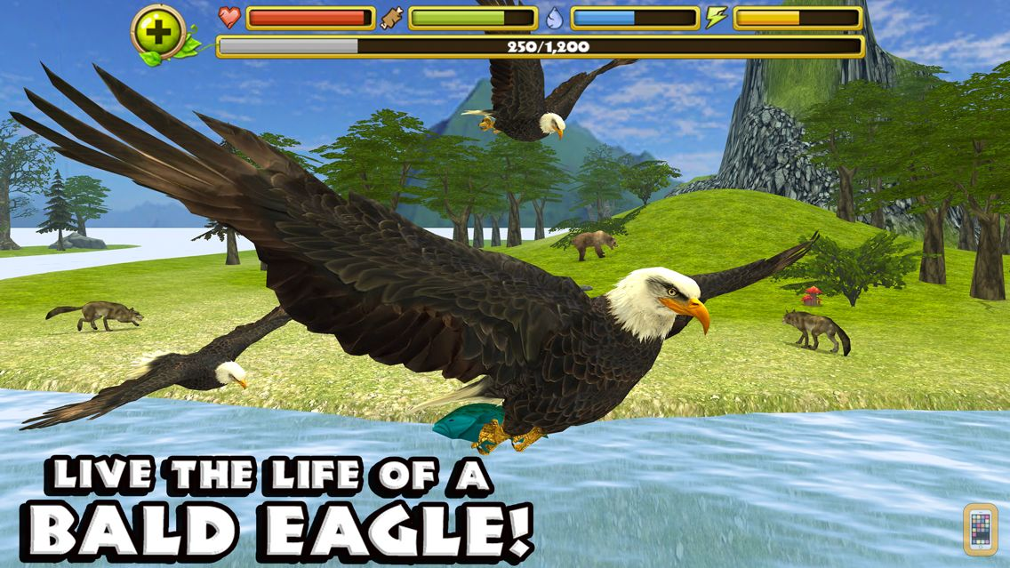Screenshot - Eagle Simulator