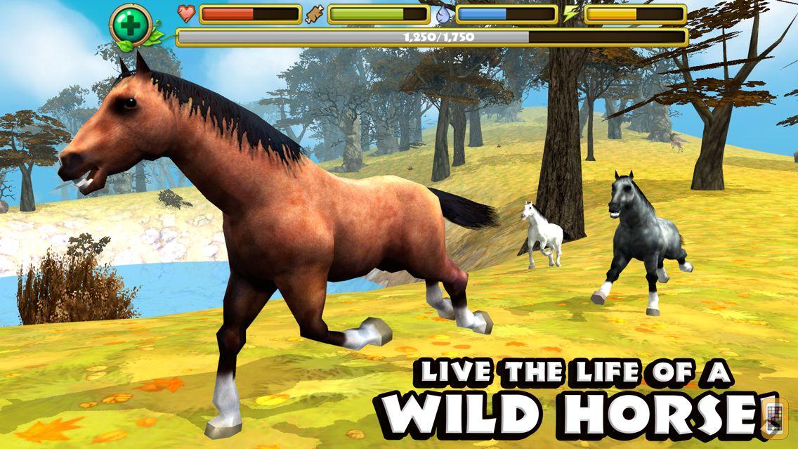 Screenshot - Wild Horse Simulator